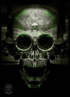 Black-green-skull-by-krane by zordesign