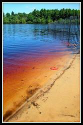 Atsion Lake by jochra
