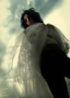 fallen angel by sianxian