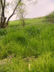 landscape2 by compot-stock