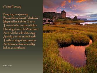 Celtic Fantasy by bixster