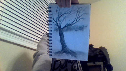 Tree by hilly6066