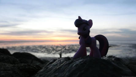 Twilight at the Dorum Mudflats, Germany by caffeinejunkie