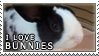 I Love Bunnies Stamp by AlleyCat042