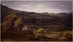 Landscape by MOSREDNA