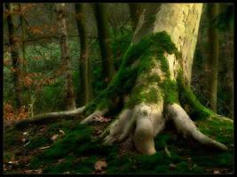 tree by MOSREDNA