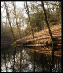 reflection... by MOSREDNA