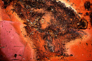 On Wings: Rust Life by Beyond-Oddities