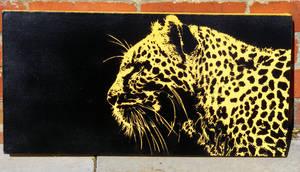 Leopard by 23rdkey