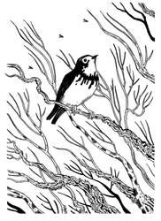 Ink - Canada Warbler by Gytrash01