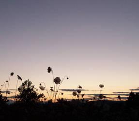 dusk of the earth by kaidi10
