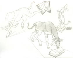 _Book Okapi_ by Aikya