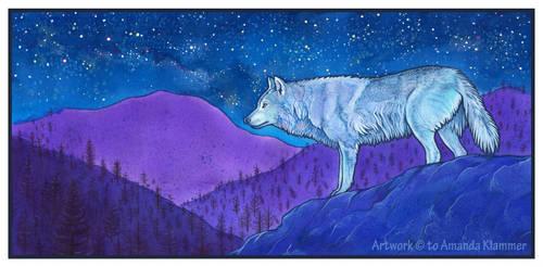 A Night's Whisper by Aikya