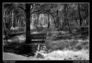 Bench in Infrared by darkness06660