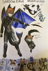 Shadow rage miraculous (concept) by DiamondDog27