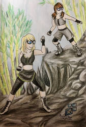 Fighting on the cliffs (request) by DiamondDog27