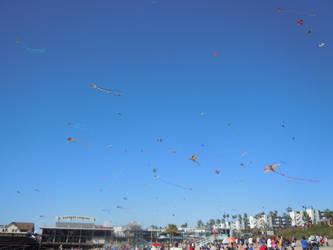 International Kite Festival - Redondo Beach 2 by lightwolf21
