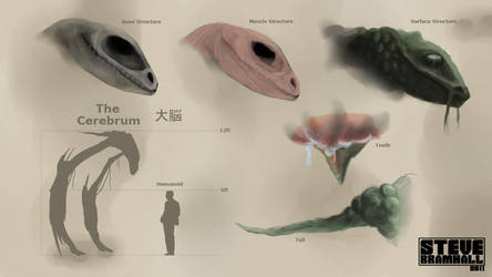 The Cerebrum by brammy7