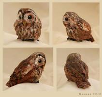 Blodeuwedd's Owl by Haawan