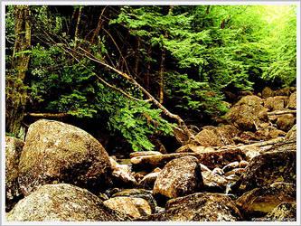 On The Rocks by afireinsidedc
