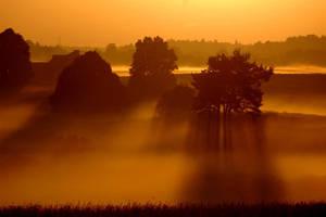 Mist I by amisiux