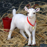 Needle felted goat by YuliaLeonovich