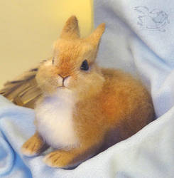 Needle Felted Rabbit / Bunny by YuliaLeonovich