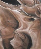 Closeup of a bone by BoBxisxcool