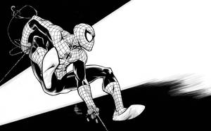 Spider Commission 2012 by Spacefriend-KRUNK
