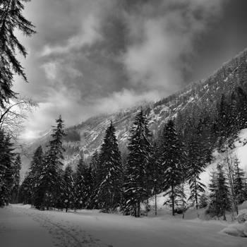 The Trail 3 by MK-NI