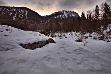 winter morning by MK-NI