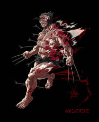 WOLVERINE by CaptainLuckypants