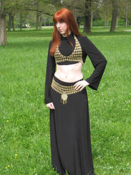 Cassandra Costume Chain Maille by hwkwlf