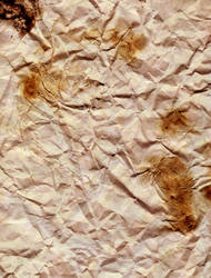 Dirty Paper Texture by Katara360