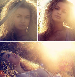 Sunny Fall by Clairic