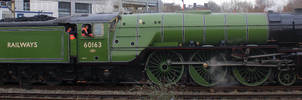 The A1 Peppercorn Class by CJSutcliffe
