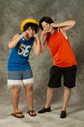 Luffy and Ace: Brothers 'till the end by anttaDEI