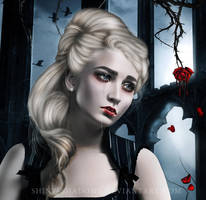 The Things Unsaid by shiny-shadows-Art