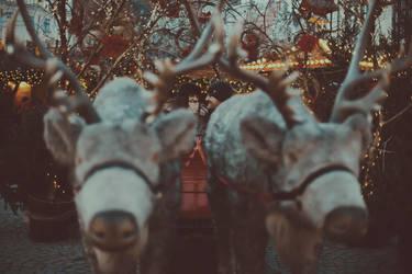 winter lovers by Basistka