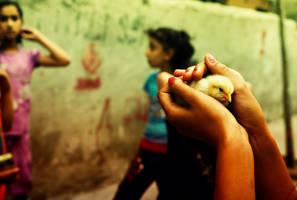 102- in my hand... by salihagir