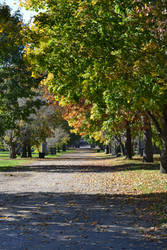 Graveyard walkway Erie Street by TomKilbane
