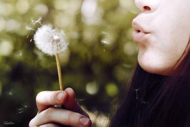 I was a dandelion by vesaspring