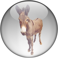 Silver Aqua eMule-eDonkey Icon by rontz