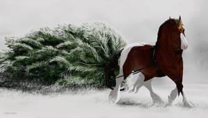 Crixus' Winter Joy by Shevy-Art