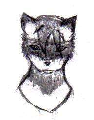 Raccoon head sketch by DIRGwolf