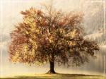 A Retro Autumn by garnettrules21