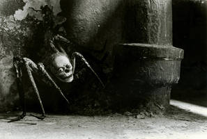 Arachnophobia by spookyclowngod