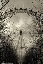 London Eye by shalgona