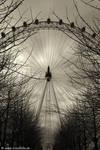 London Eye by shalgona
