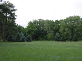 trees in the park and disc golf by SketchTeno